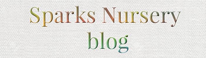 Nursery- Sparks 8