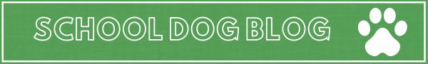 School Dog 2