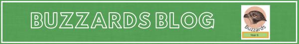 Year 5 & 6- Buzzards 2